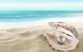 Eine Muschel liegt in hellem Sand auf einem Strand. Im Hintergrund türkises Meer. In ihr liegt eine große Perle
