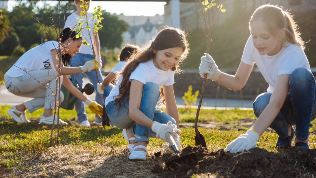 Kinder pflanzen Bäume an einem sonnigen Tag in die Erde.